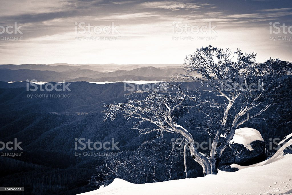 Winter in the high country stock photo