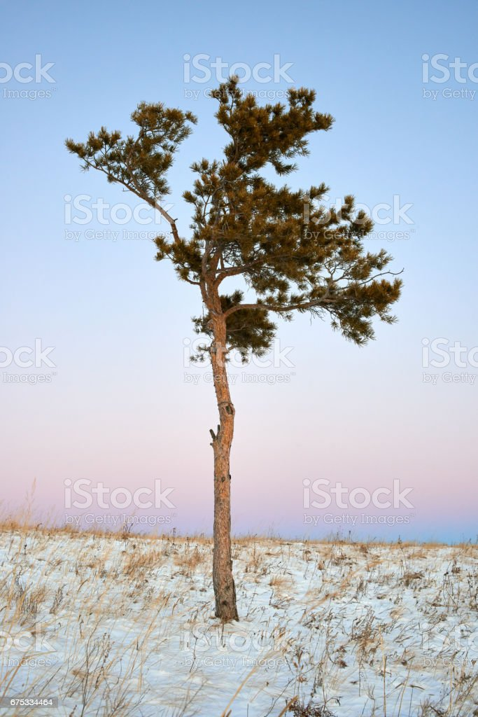 Winter in the Karkaraly Mountains stock photo