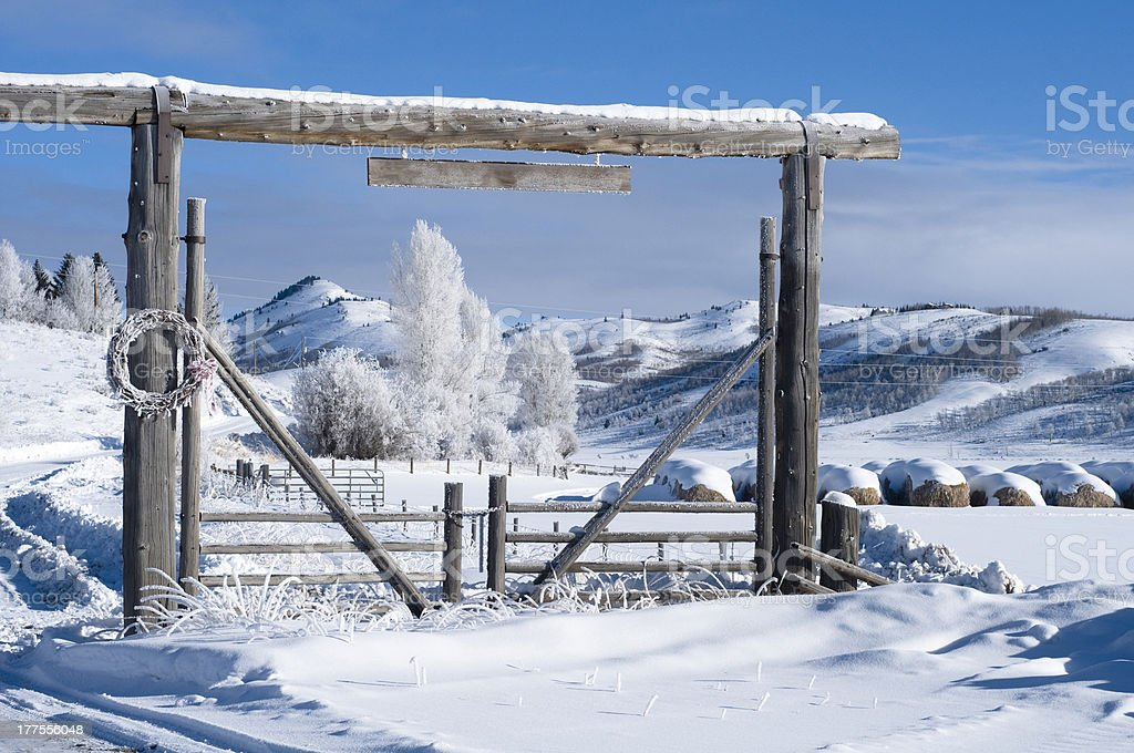 Winter in the ranch stock photo