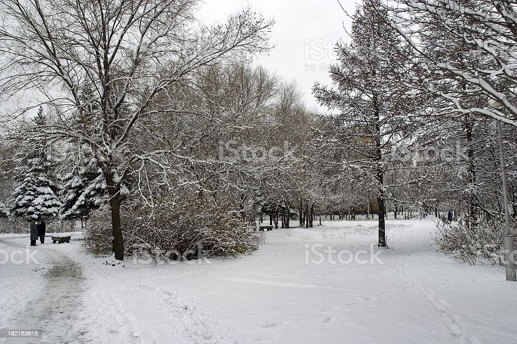 Winter in  Town 6 royalty-free stock photo