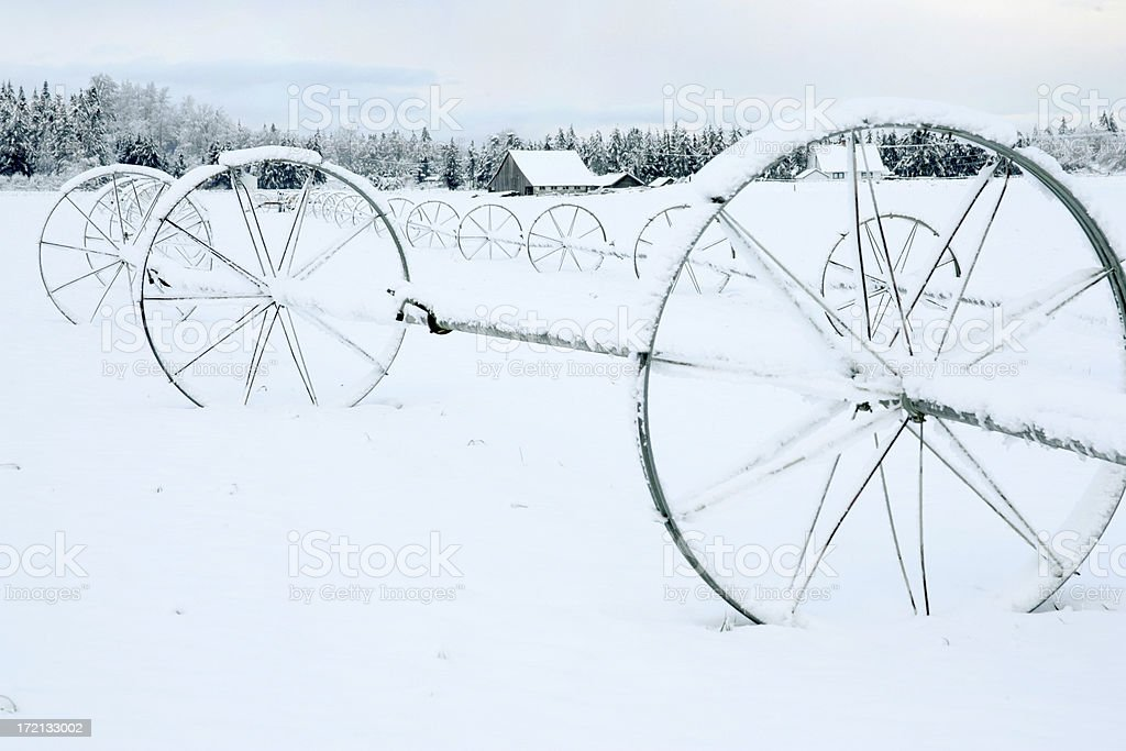 winter irrigation royalty-free stock photo