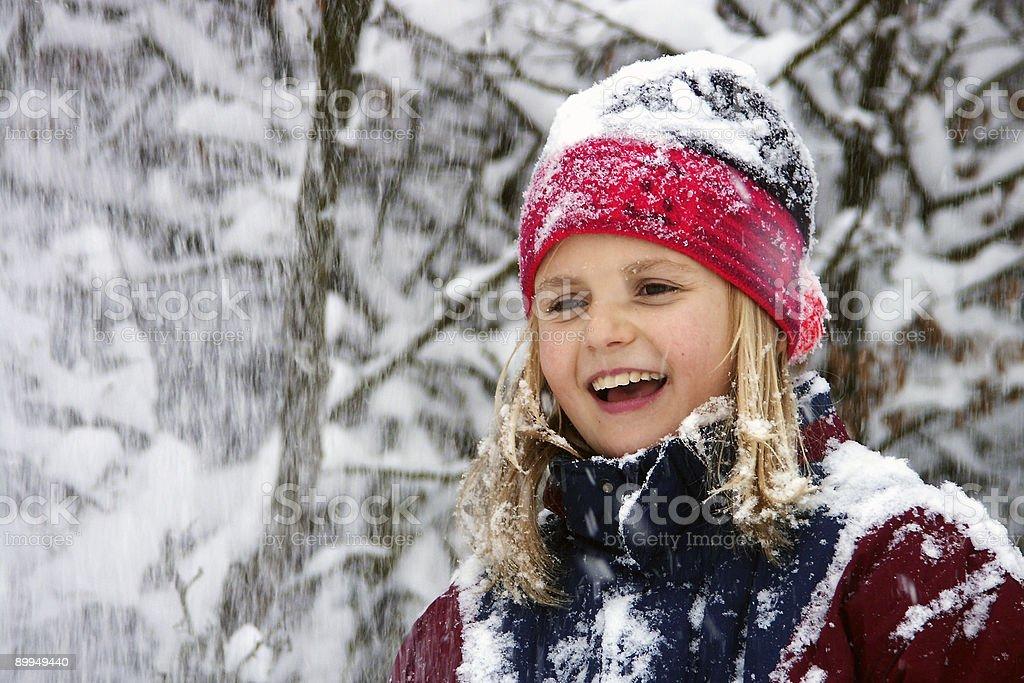Winter joys royalty-free stock photo