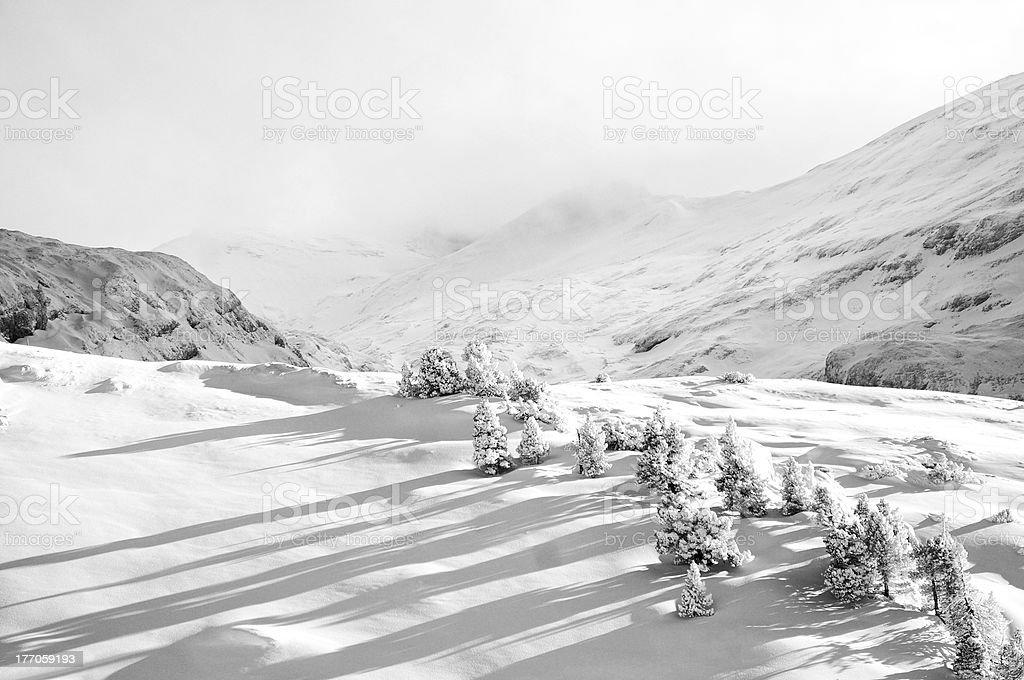 Winter landcape stock photo