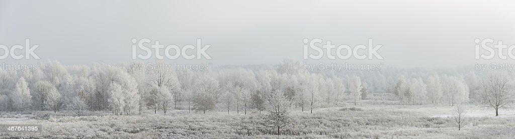 Winter Landscape - 87 Mpx royalty-free stock photo