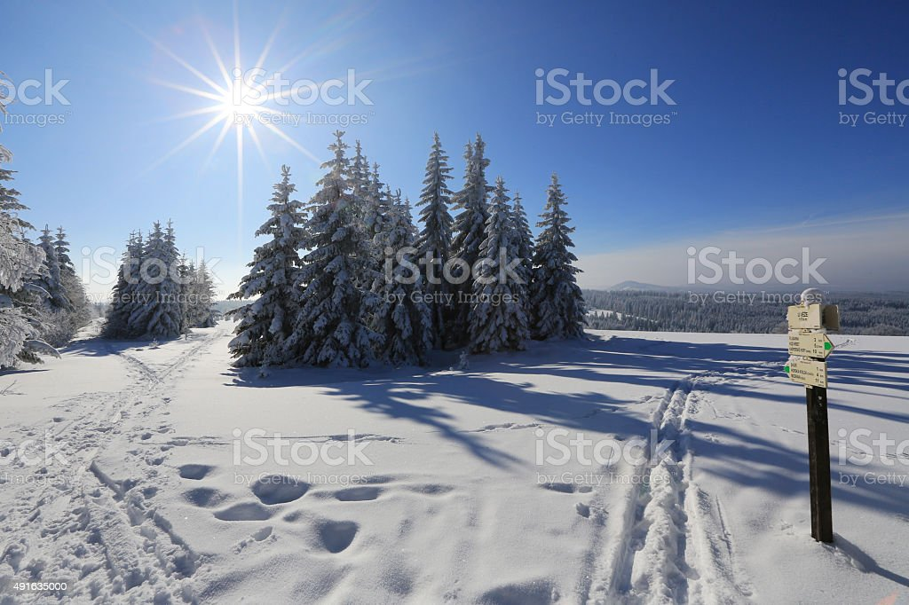 Winter landscape and snow wrapped trees stock photo