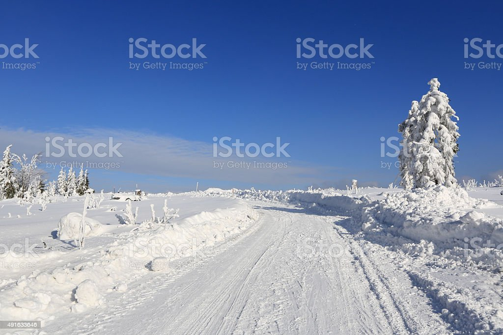Winter landscape and trails for skiers stock photo