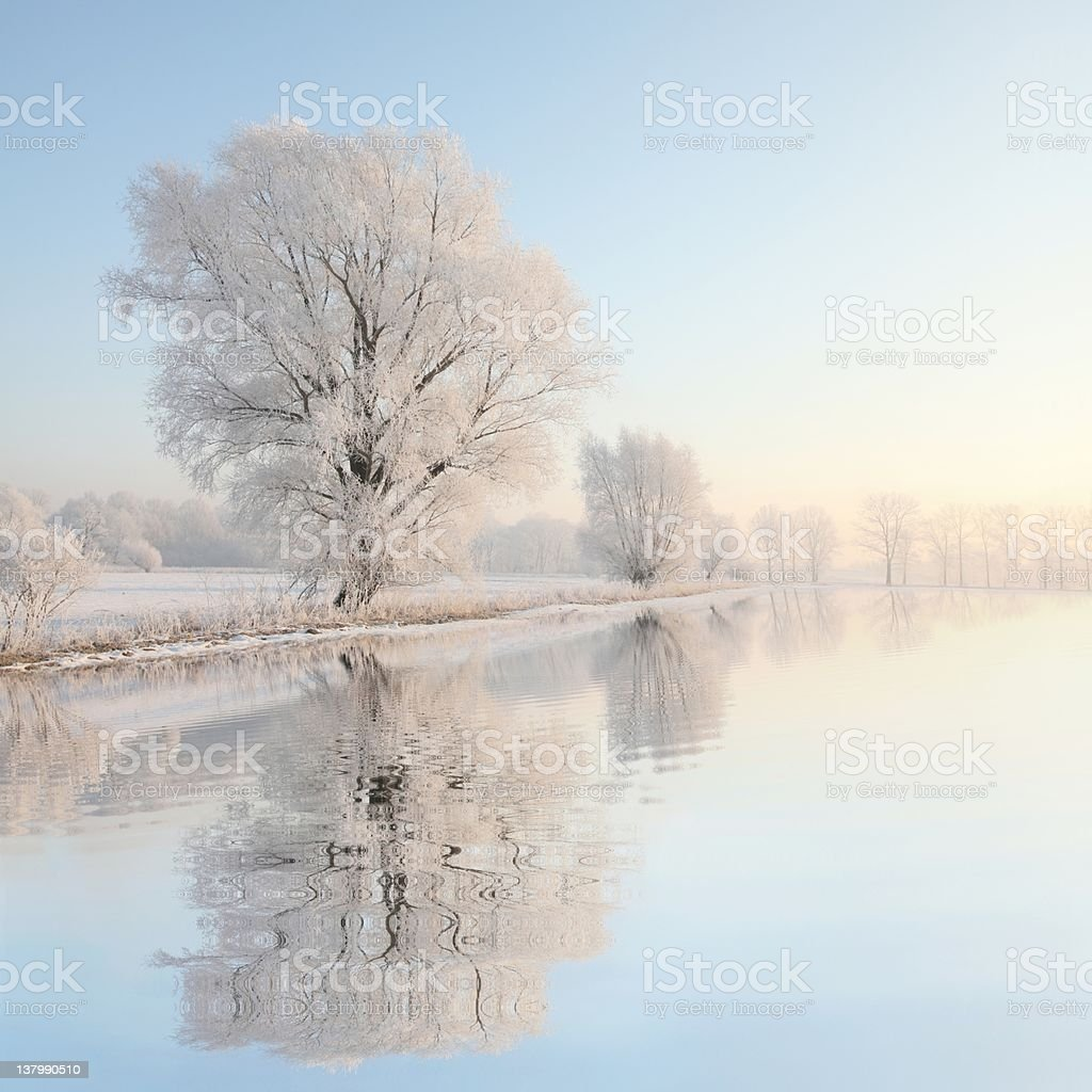 Winter landscape at dawn stock photo