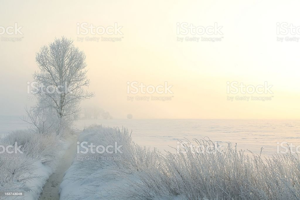 Winter landscape at dawn royalty-free stock photo