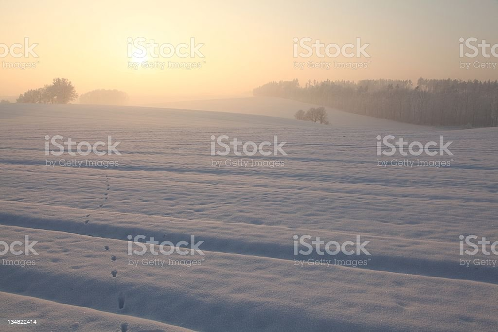 Winter landscape at dusk royalty-free stock photo