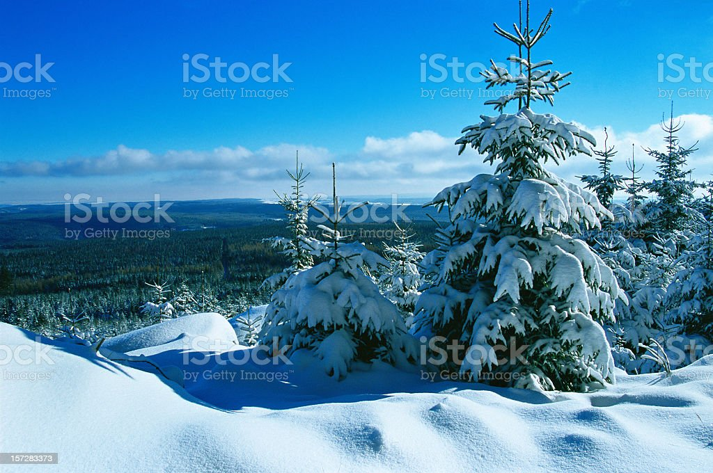 Winter Landscape II royalty-free stock photo
