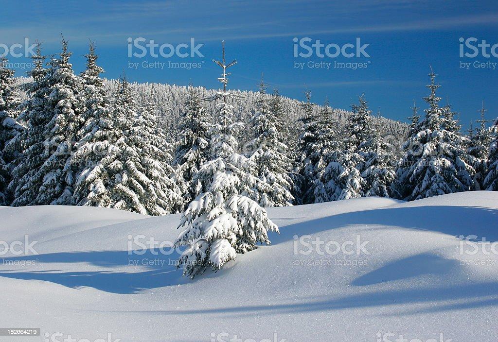 Winter Landscape IIXX royalty-free stock photo