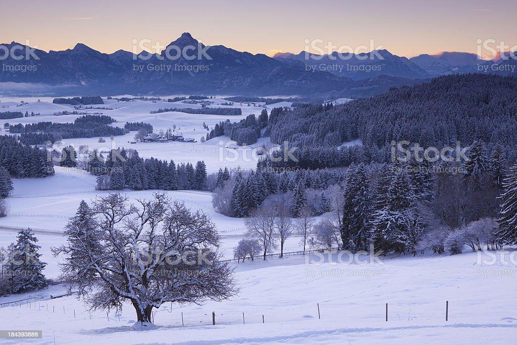 'winter landscape in bavaria, germany' stock photo