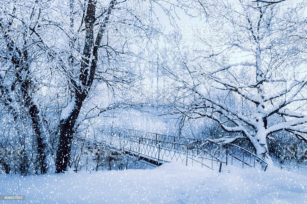 Winter landscape in cold tones - frosted winter trees and old metal...