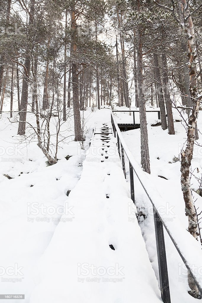 Winter landscape in Lapland, Finland royalty-free stock photo