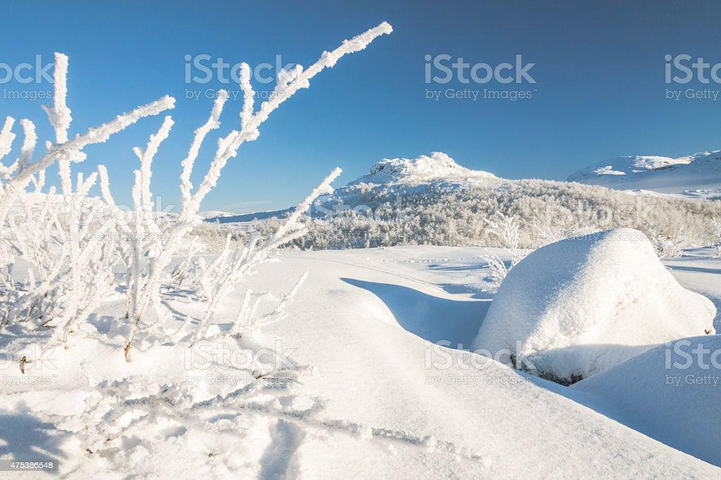 Winter landscape in Riksgränsen, Kiruna, Sweden stock photo