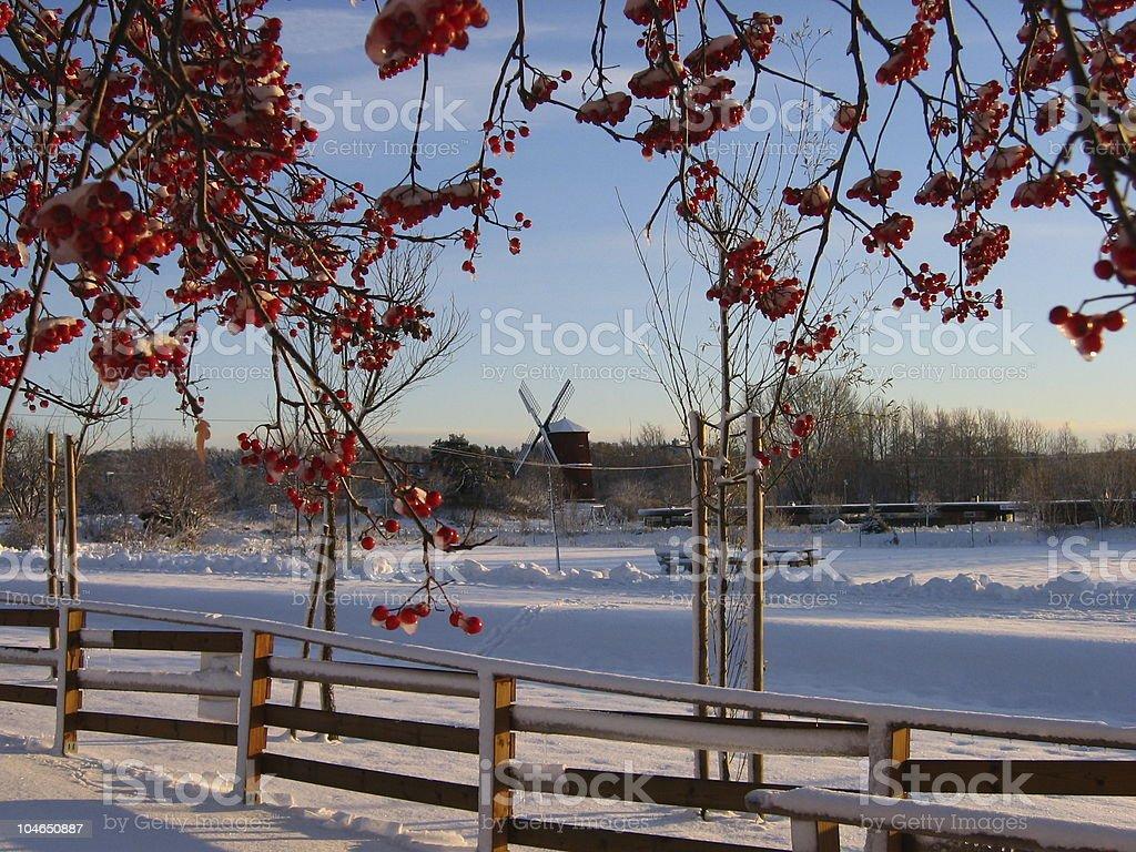 Winter landscape in Sweden royalty-free stock photo