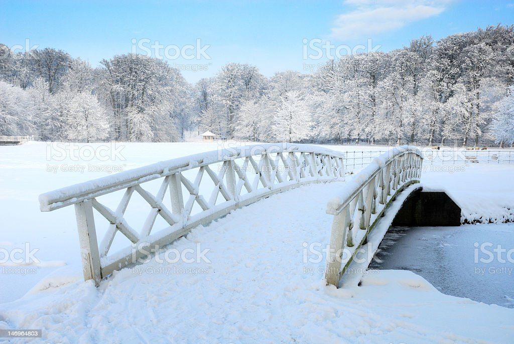 winter landscape in the Netherlands royalty-free stock photo