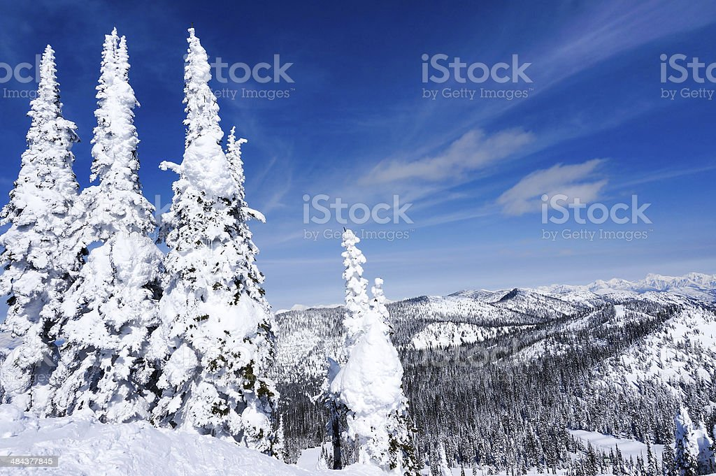 Winter Landscape in Whitefish, Montana stock photo