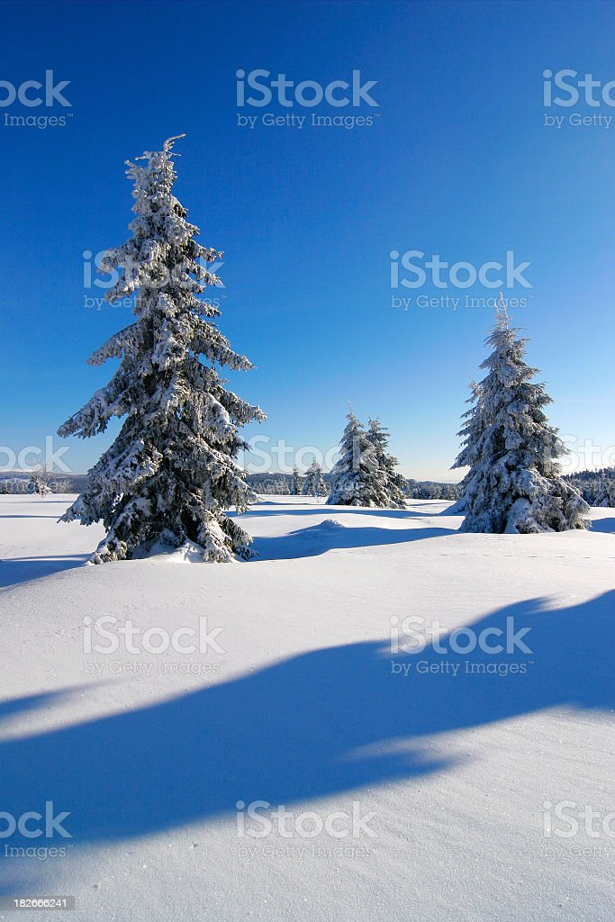 Winter Landscape IXX royalty-free stock photo