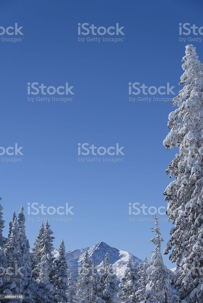 Winter Landscape Mt. of the Holy Cross Mountain stock photo