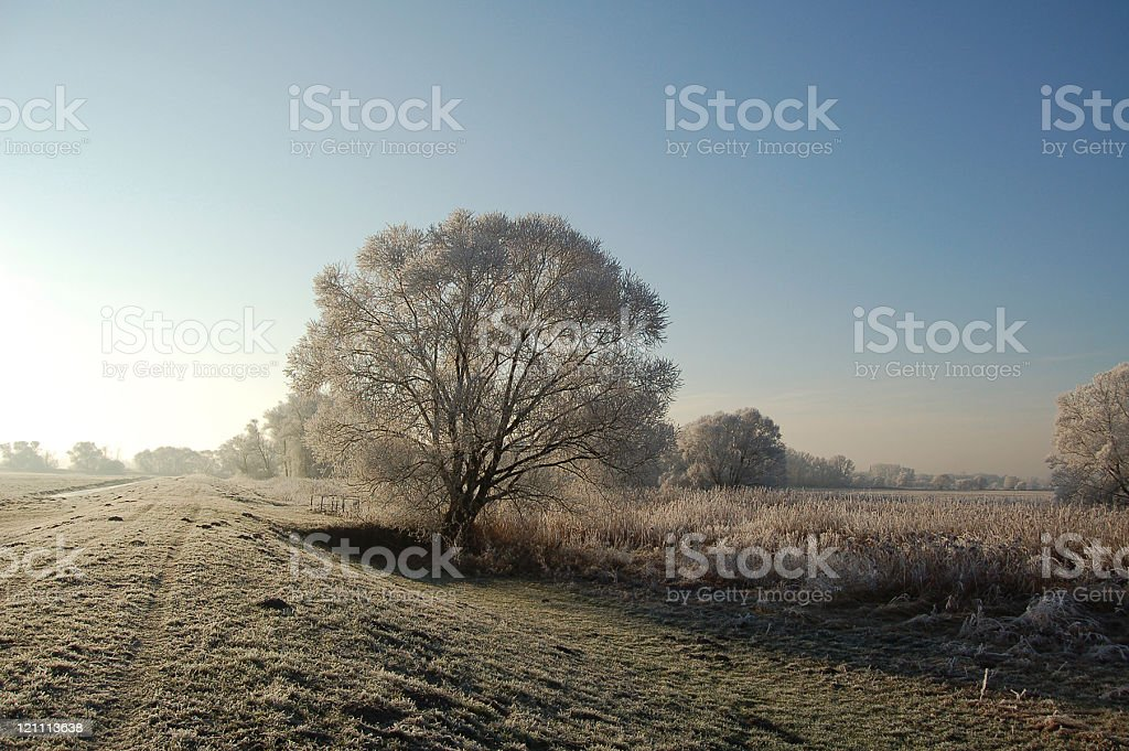 winter landscape of a river dyke royalty-free stock photo