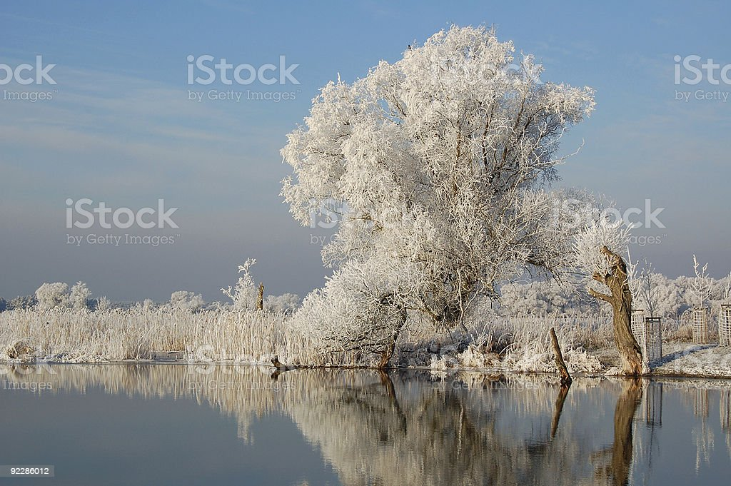 winter landscape of a river royalty-free stock photo