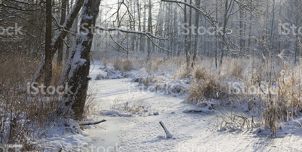 Winter landscape of frozen Lesna River at sunny day stock photo