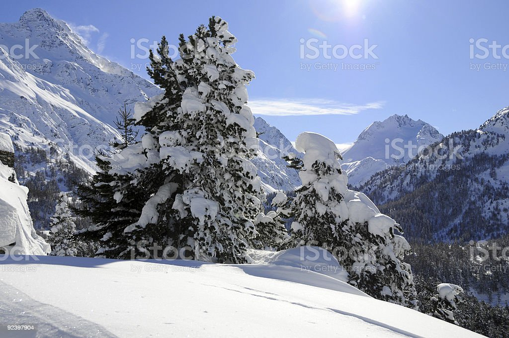 Winter landscape of the Engadine stock photo