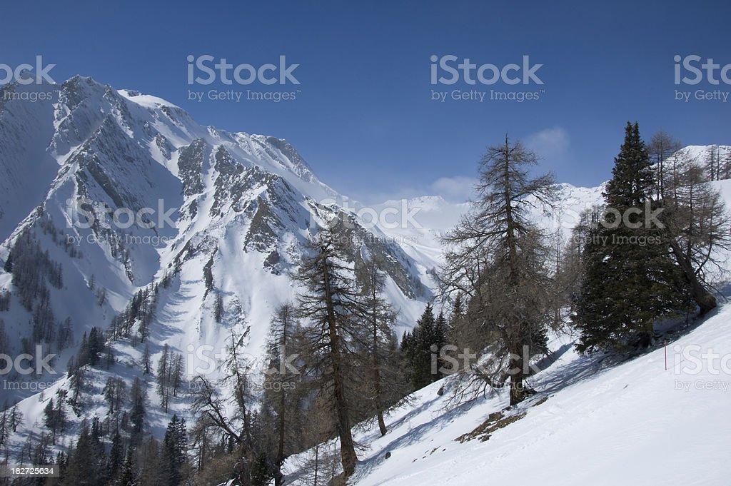 winter landscape on a beautiful day stock photo