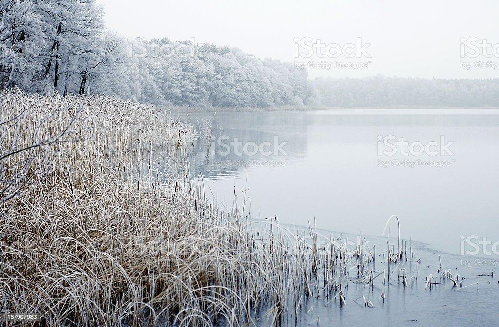 Winter landscape on a river stock photo