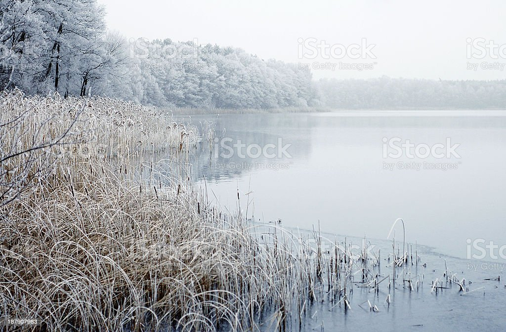 Winter landscape on a river stock photo