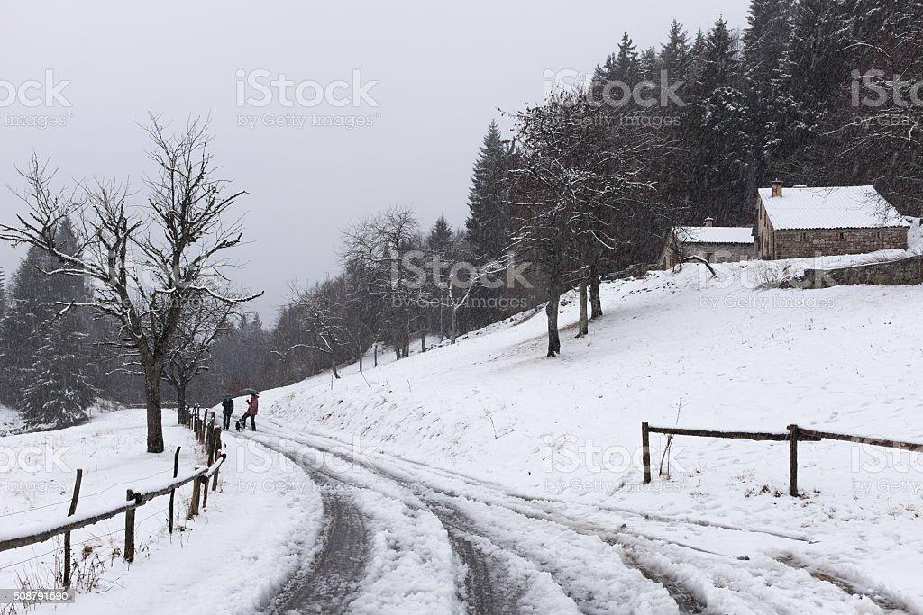 winter landscape on the Monte Grappa stock photo
