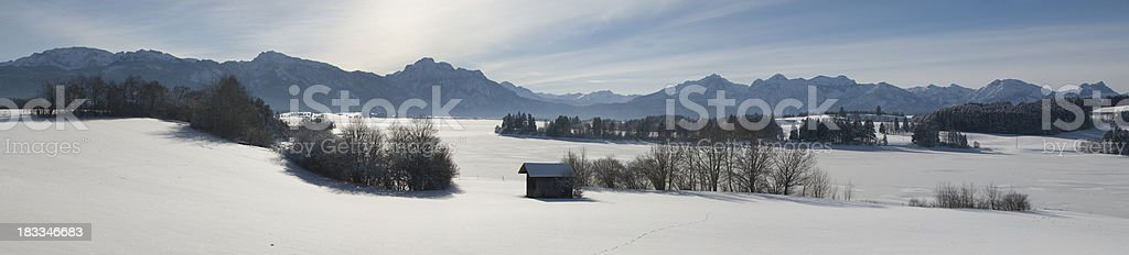 XXL Winter landscape panorama - trees and snow field stock photo