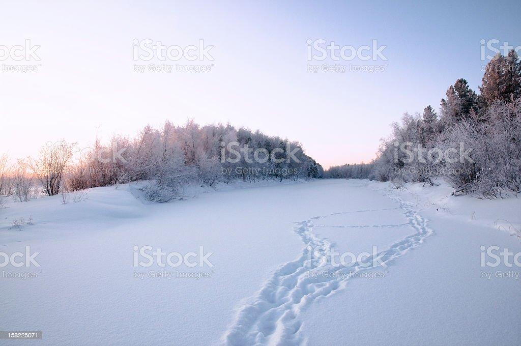 Winter landscape. stock photo