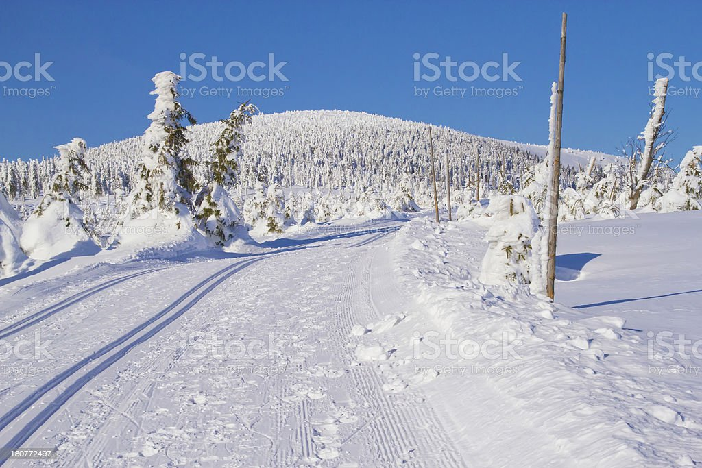 Winter  landscape scenery with cross country skiing way stock photo