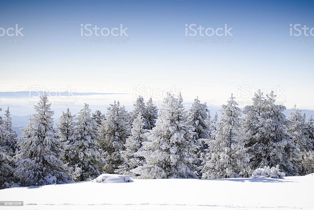 Winter Landscape Series 1 royalty-free stock photo