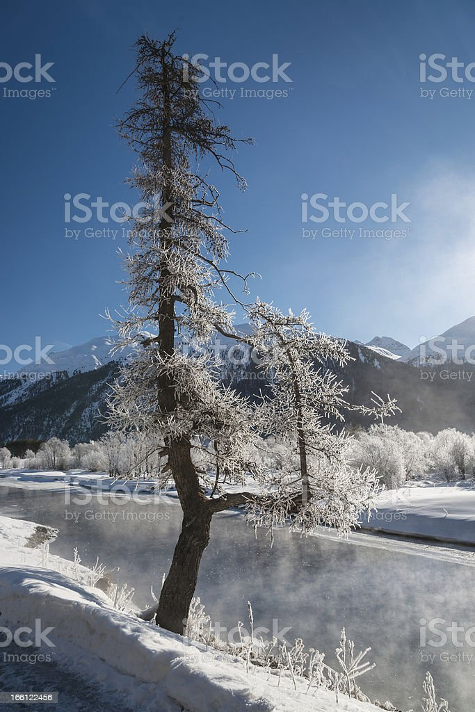 Winter landscape, St. Moritz, Switzerland royalty-free stock photo