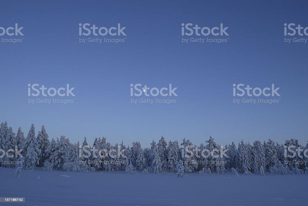 Winter Landscape Twilight royalty-free stock photo