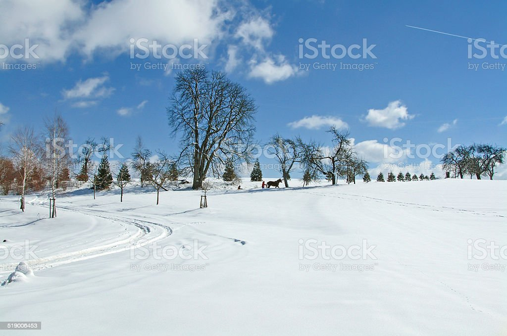 Winter landscape with a distant sleigh royalty-free stock photo
