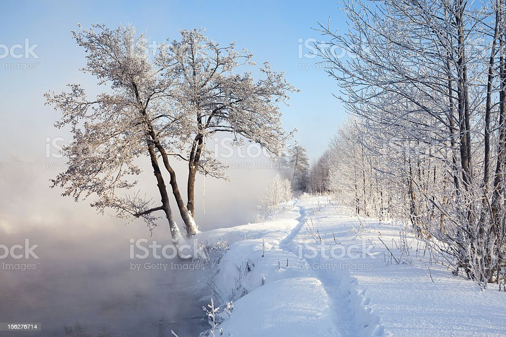 Winter landscape with foggy river and frozen trees in morning royalty-free stock photo