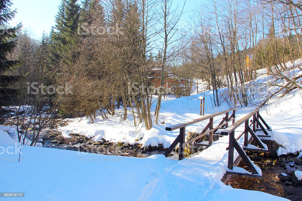 Winter landscape with forest and river stock photo