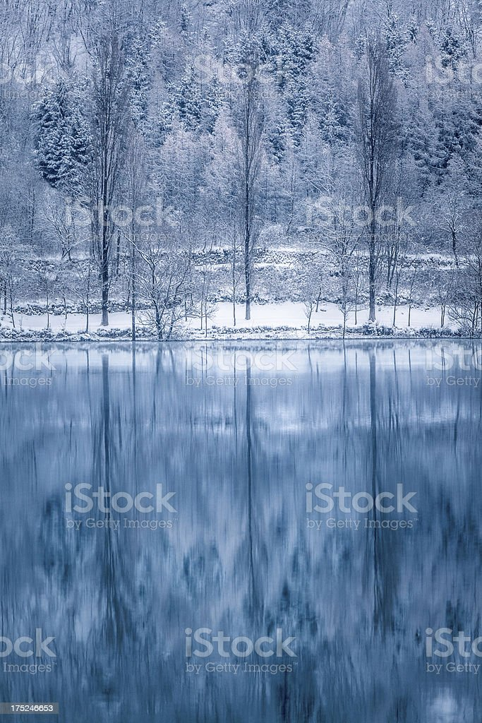 Winter Landscape with Lake and Snowy Trees royalty-free stock photo