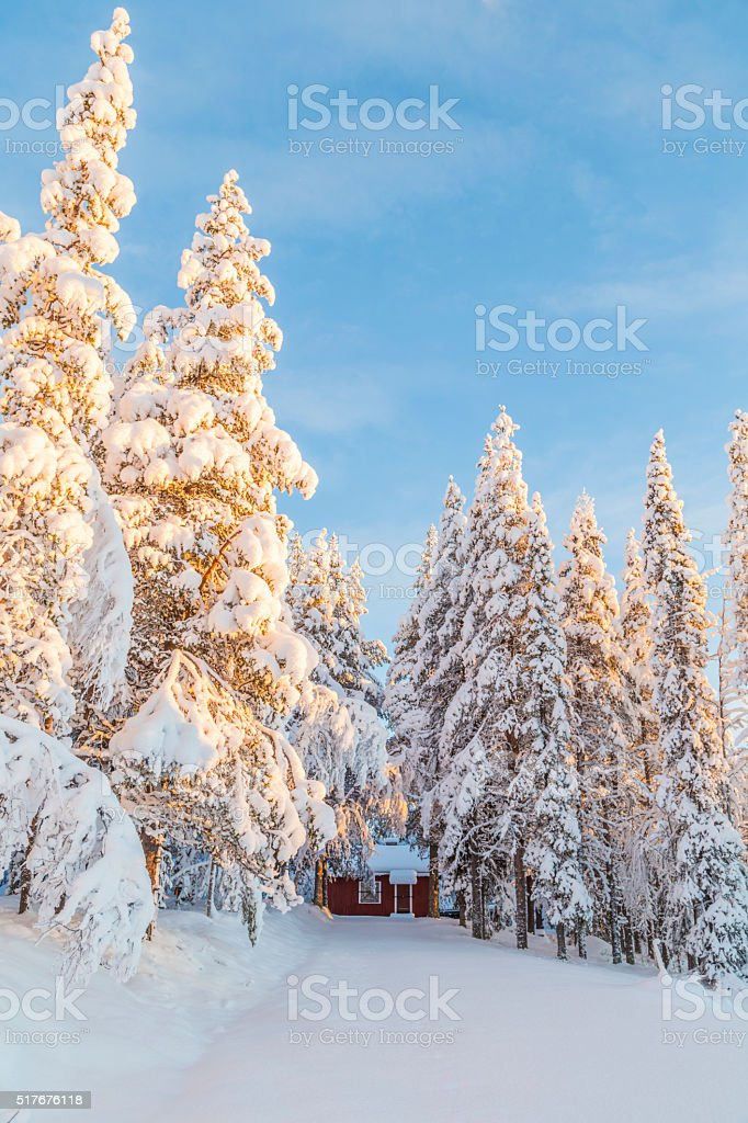 Winter landscape with snowy trees and a cabin stock photo