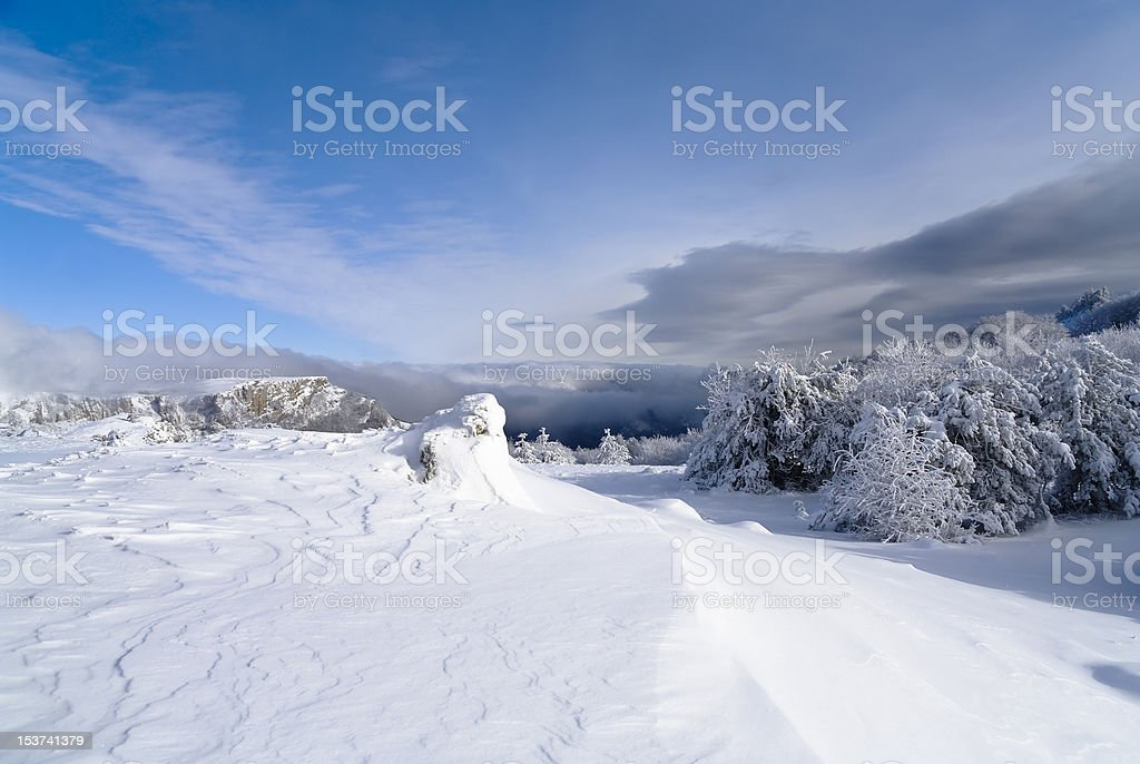 winter landscape with snowy trees royalty-free stock photo