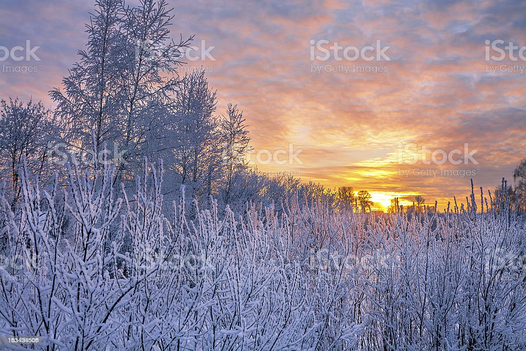 winter landscape with sunset royalty-free stock photo