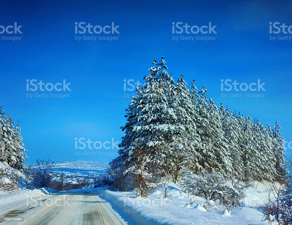Winter Landscape with trees and a road stock photo