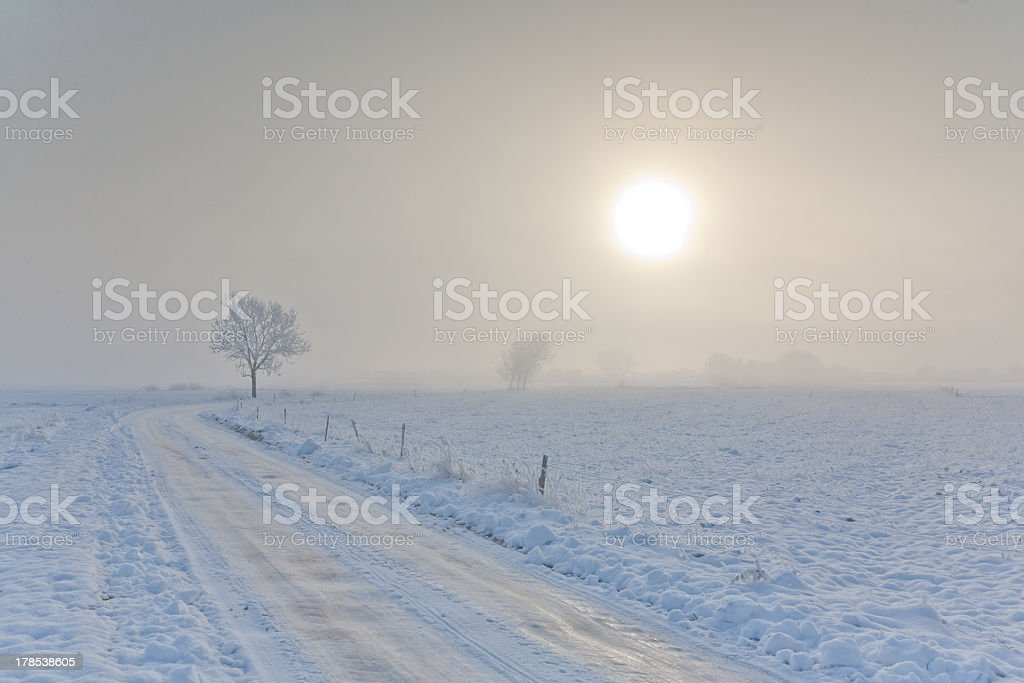 Winter landscape with trees snow wrapped and road royalty-free stock photo