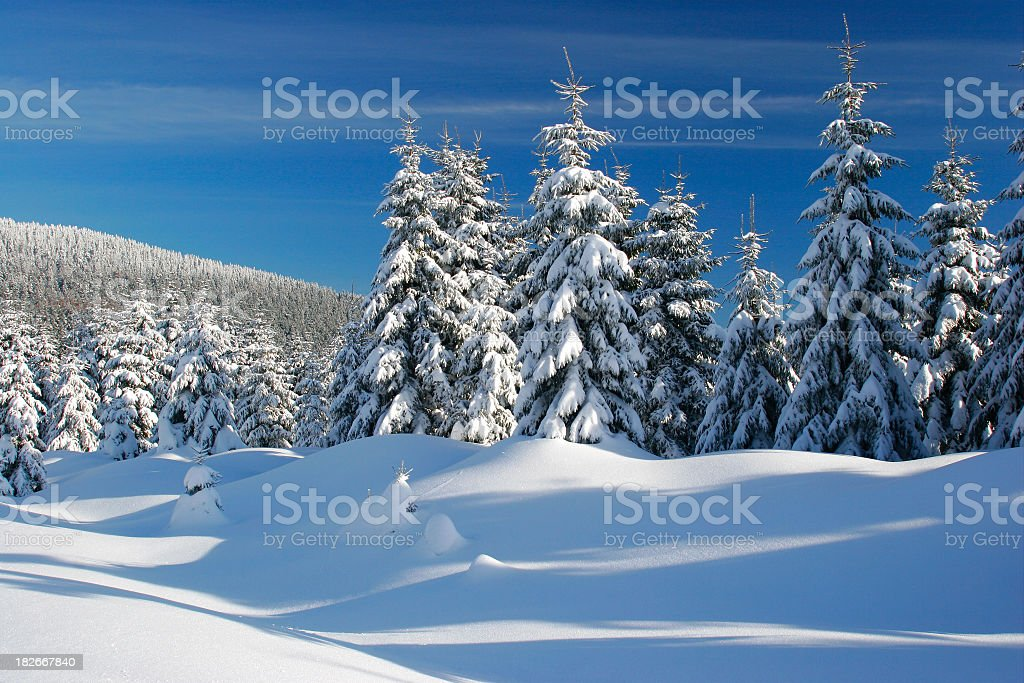 Winter Landscape XIV royalty-free stock photo