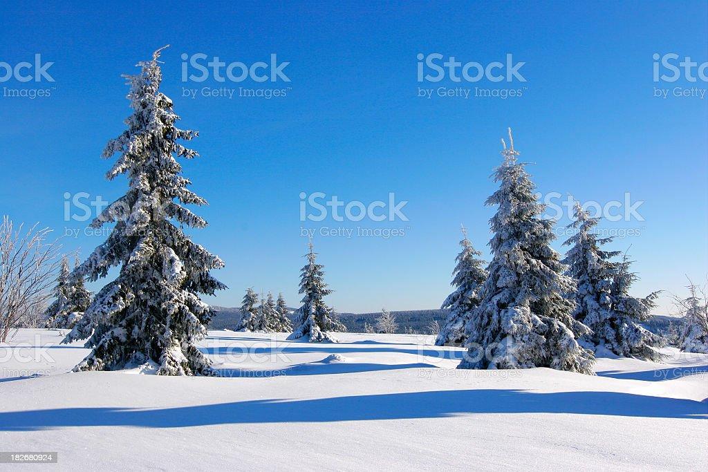 Winter Landscape XXIII royalty-free stock photo