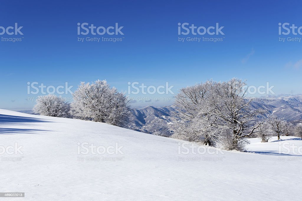 winter landscapes royalty-free stock photo